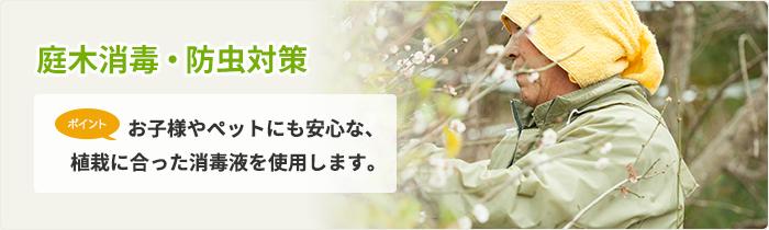 庭木消毒・防虫対策